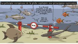 peche_0